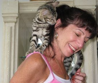 Bengal cat love standing on shoulders